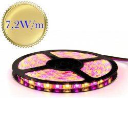 RGBW színes + Meleg fehér (energiatakarékos!) beltéri LED szalag, 5050, 30 SMD/m, nem vízálló!